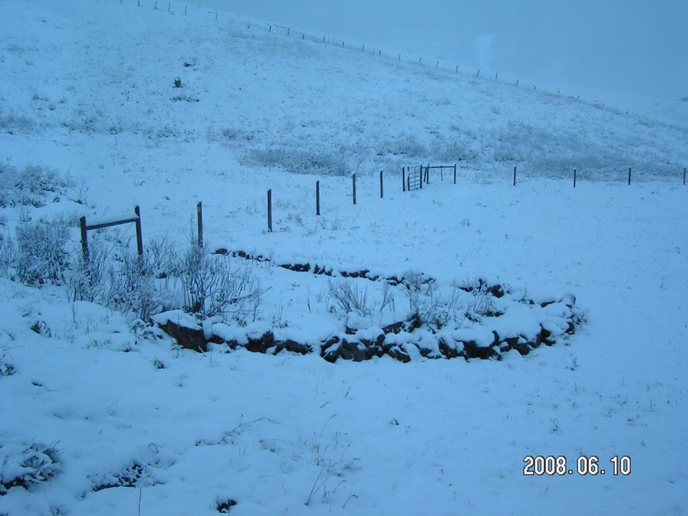 Random picture thread Snow-june4