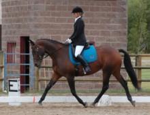 Anna riding Ossette