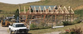 Day 2: Quickly followed by the trusses